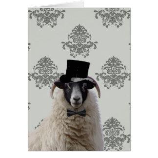 Carneiros engraçados do noivo no chapéu alto cartão comemorativo