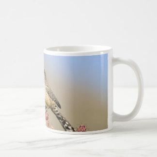 Carriça de cacto caneca de café