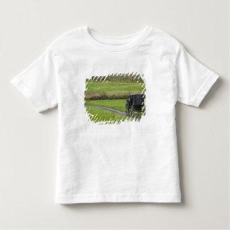Carrinho de Amish na pista da fazenda, Ohio do Tshirts