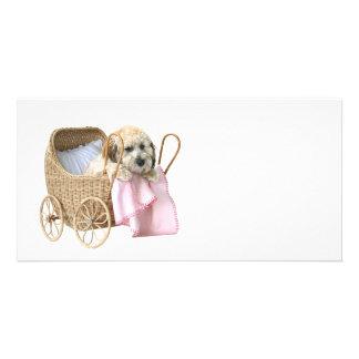 Carrinho de bebê da caniche cartão com foto