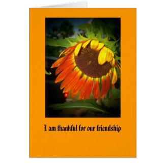 Cartão 100_1499, eu sou grato para nossa amizade