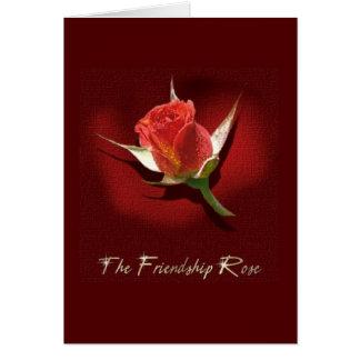 Cartão A amizade aumentou