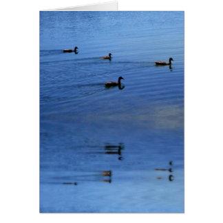 Cartão A lagoa do pato
