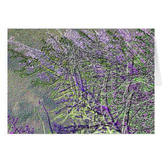 Cartão A prata selvagem exótica planta V1