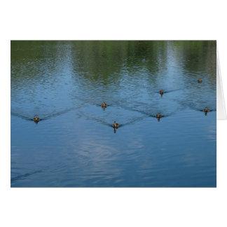 Cartão Acordares do pato
