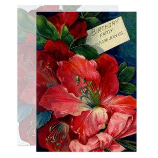 Cartão Amaryllis