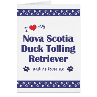 Cartão Ame meu Retriever anunciando do pato de Nova