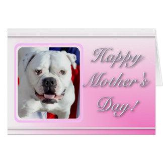 Cartão americano do buldogue do dia das mães feliz
