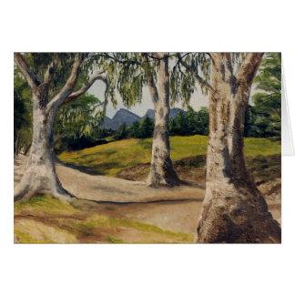 Cartão Angra e gumtrees secos no Flinders
