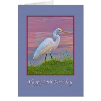 Cartão Aniversário, 87th, grande Egret que dá uma volta