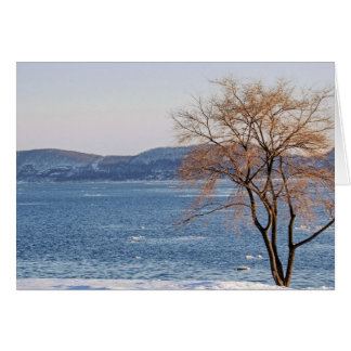 Cartão Aproximação amigável do primavera, doca do barco a