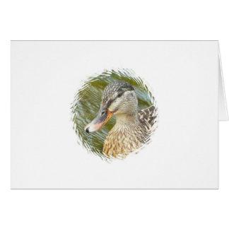 Cartão Arte do pato