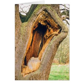 Cartão Árvore de bocejo