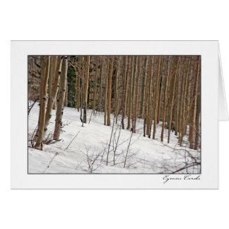 Cartão Árvores de vidoeiro na neve