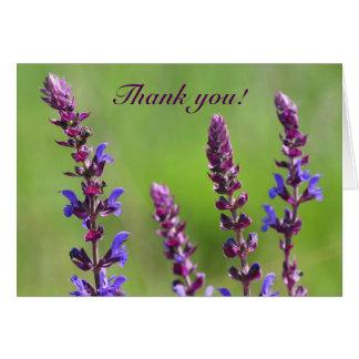 Cartão As flores do salvia do sábio roxo agradecem-lhe