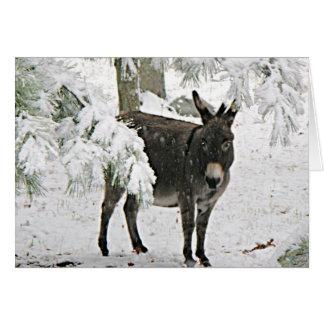 Cartão Asno na neve