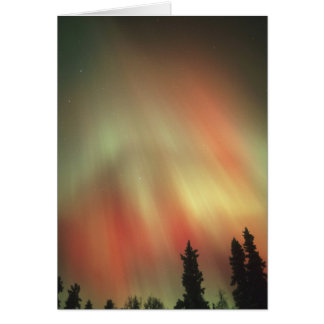 Cartão Aurora Borealis, aurora boreal, Fairbanks