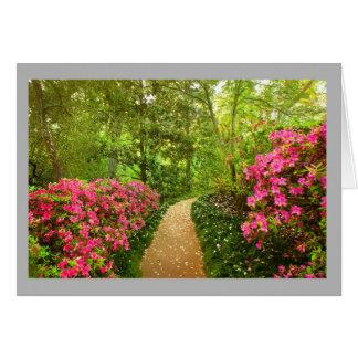 Cartão Azáleas da paisagem 74 & trajeto cor-de-rosa do