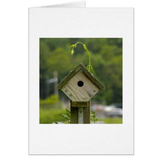 Cartão Birdhouse com um cowlick