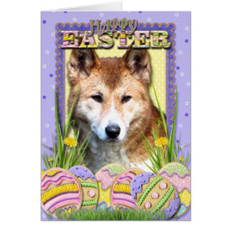 Cartão Biscoitos do ovo da páscoa - Dingo