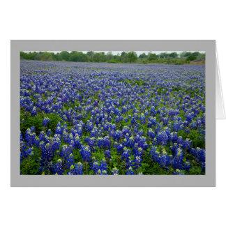 Cartão Bluebonnets de Texas 1