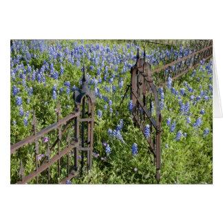 Cartão Bluebonnets e porta circunvizinha do cemitério do
