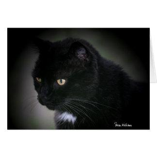 Cartão bonito do gato preto