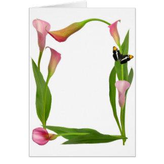 Cartão Borboleta do lírio de Calla cor-de-rosa