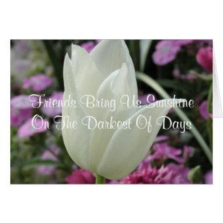 Cartão branco da tulipa das citações da amizade