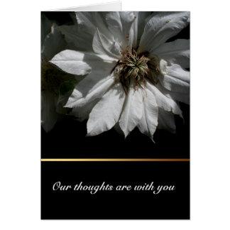 Cartão branco dos pêsames da simpatia do Clematis