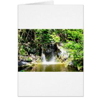 Cartão Cachoeira de Sunreflected
