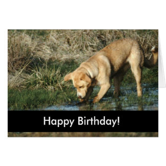 Cartão Cachorrinhos do feliz aniversario