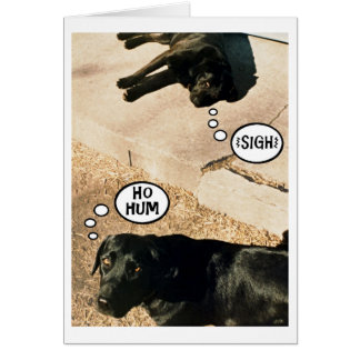 Cartão Cachorrinhos furados - nós senhorita Você