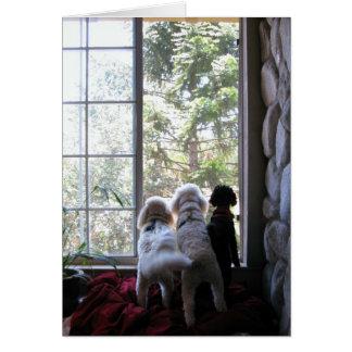 Cartão Cachorrinhos na janela