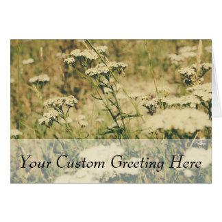 Cartão Campo do Yarrow, filtro retro verde sobre a foto