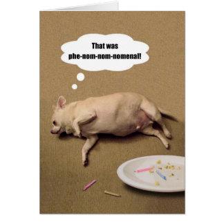 Cartão carnudo da chihuahua do feliz aniversario