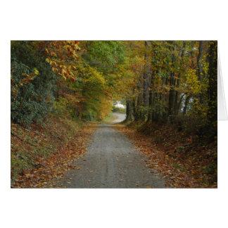 Cartão Carolina Backroads