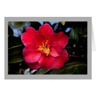 Cartão Centro do ouro da flor do vermelho da camélia 5