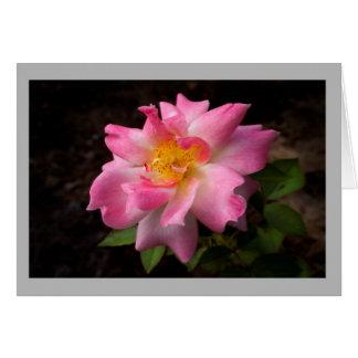 Cartão Centro vibrante do ouro do rosa do rosa