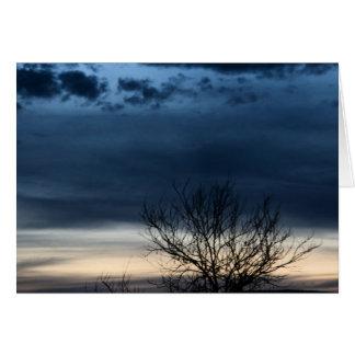 Cartão Céu da noite