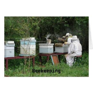 Cartão Classe da apicultura