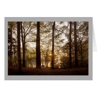 Cartão Cor do outono da floresta do lago sunset da