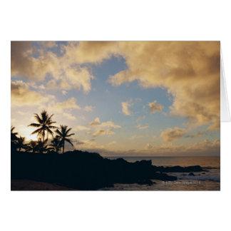Cartão Costa 5