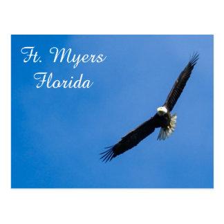 Cartão da águia americana de Fort Myers