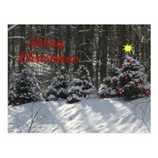 Cartão da árvore do Feliz Natal Cartão Postal