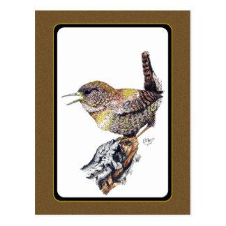 Cartão da carriça na tinta cartão postal