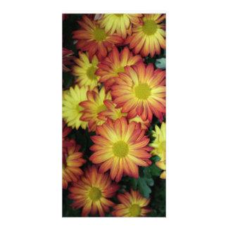 cartão da flor cartão com foto