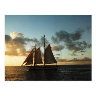 Cartão da foto da vela do por do sol de Key West Cartão Postal