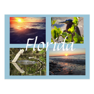 Cartão da fotografia de Florida