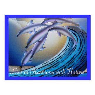 Cartão da harmonia cartão postal